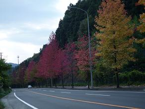 仙台村田線2