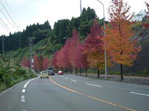 仙台村田線3