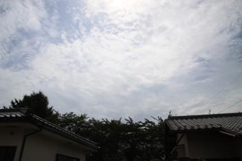 コピー ~ IMG_7315