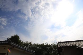 コピー ~ IMG_9071