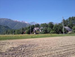 Photo3265 (800x600)