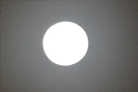 DSC_0120_20111212120121.jpg