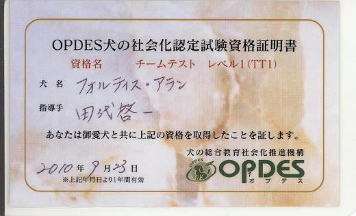 OPDESの合格書・2