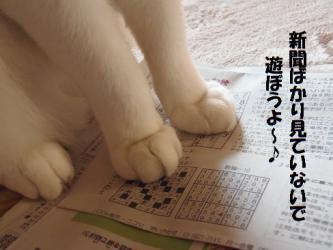 みゅう新聞1