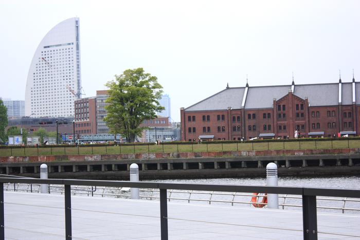 2011_05_06_4261[1]
