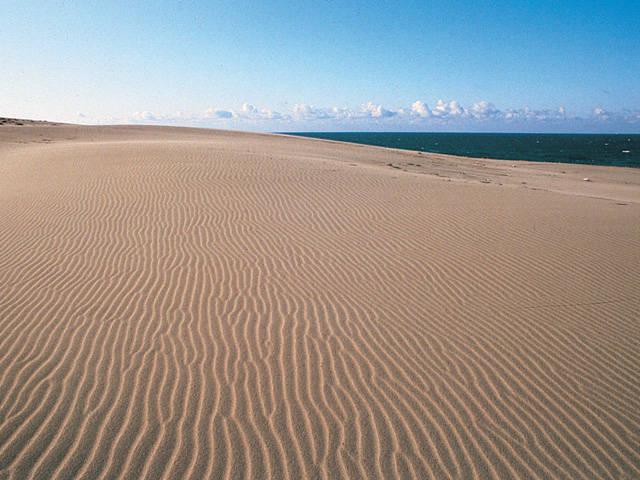 浜岡大砂丘