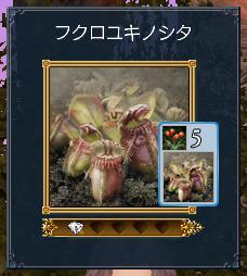 20101101_10.jpg