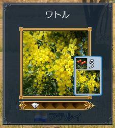 20101101_11.jpg