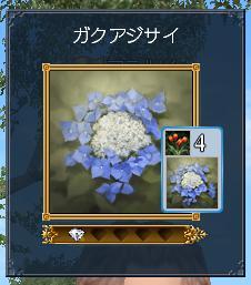 20101109_5.jpg
