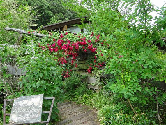 26ターシャの庭