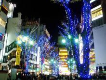 歌舞伎町イルミ1