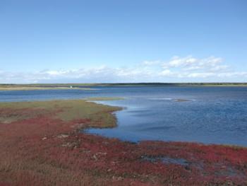 サロマ湖1