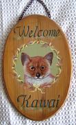 柴犬welcome