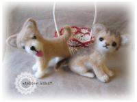kit+catdog_convert_20110530123947.jpg