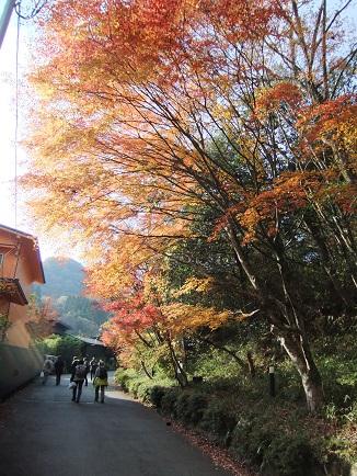 武田尾温泉へ
