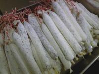 白カビサラミ2
