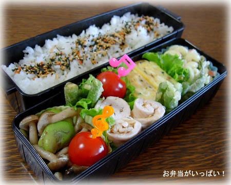 100611お弁当1