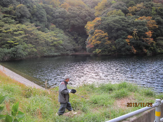 旧堤の堰側