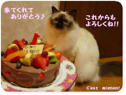 2-お誕生日来てくれてありがとう1120203