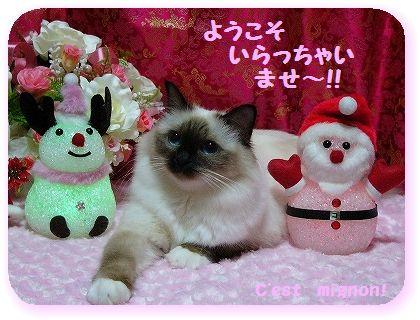 2-10クリスマスいらっしゃい1150159