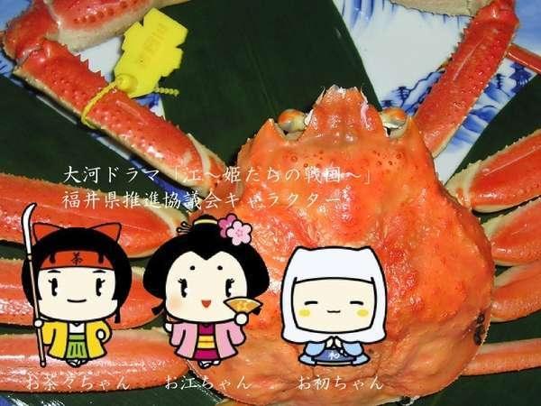 【タグ付き越前ガニ】カニカニを豪華に!カニカニお江カニ(を豪華に)プラン