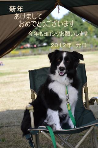 DSC_0128_20120101011623.jpg