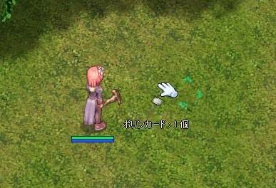 2010/02/13 フェイヨン迷いの森 04 (ポリン島)