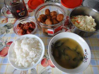 2011_0129_日本のご飯