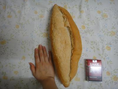 2011_0131_本物のトルコパン