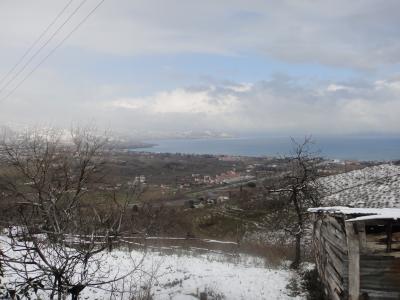 2011_0201_雪景色3