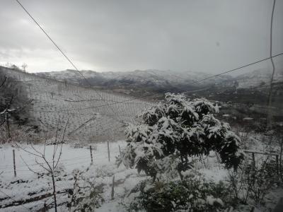 2011_0201_雪景色1