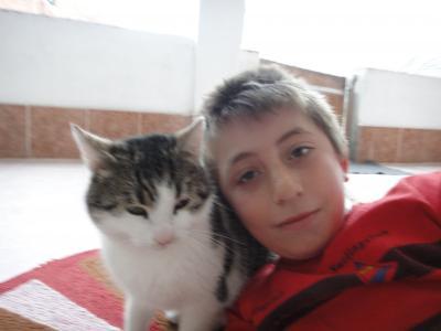 2011_0219_猫とオヌル