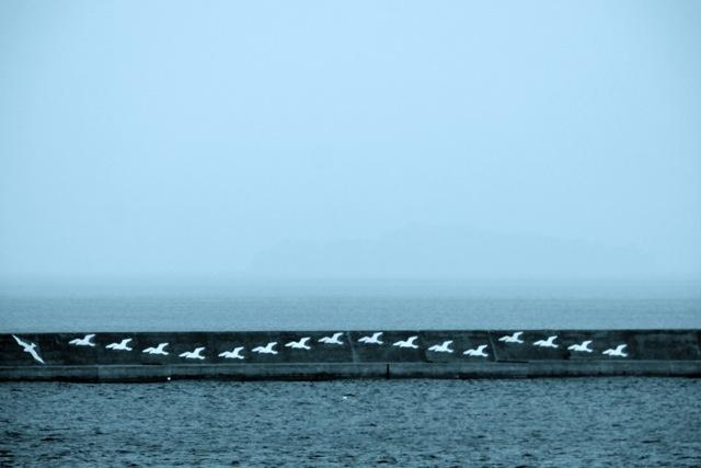 鹿児島 - 09