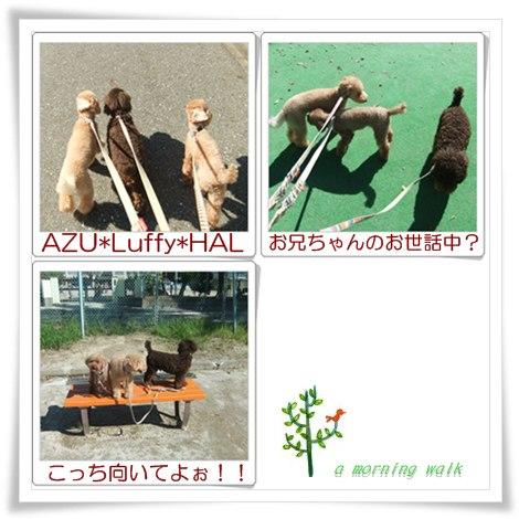 お天気最高!!