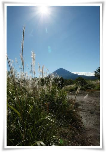 ススキと富士山のコラボ