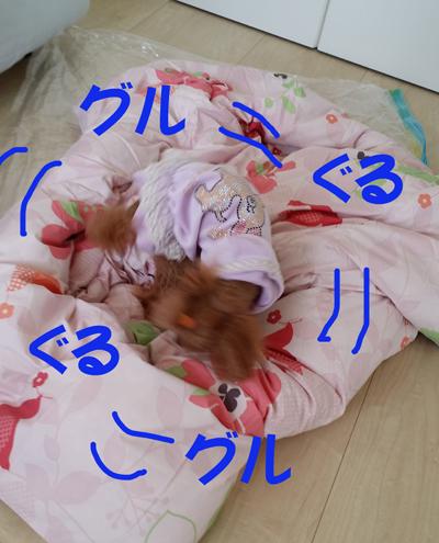 2_201410071757419ae.jpg