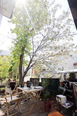 outdoor office6