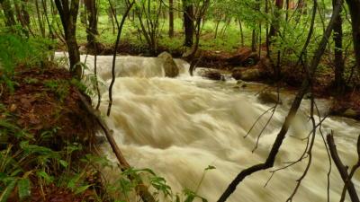 濁流の天満沢川