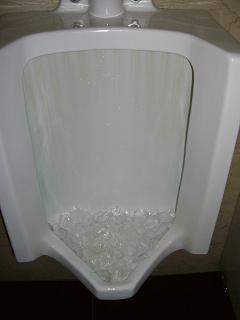 スローライフ日記-イーグルのトイレ