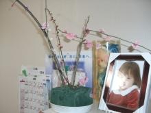 スローライフ日記 (ガンとの闘病日記はもうすぐ終わりにします)-祖母の部屋に飾った梅