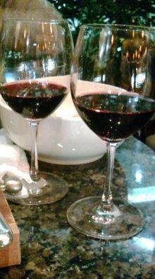 ログハウスでワインを楽しむスローライフ日記-20101130195836.jpg