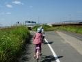 140928帰路の自転車道、第二京阪アンダーパス