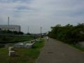 141011山科川.1