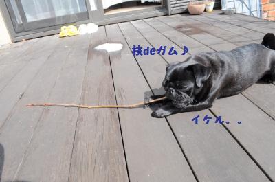 010_convert_20120308233326.jpg