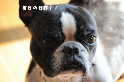 013_convert_20121025211913.jpg