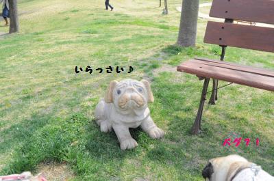 030_convert_20120422131638.jpg