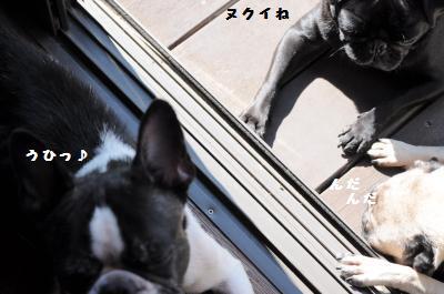 037_convert_20121004201153.jpg