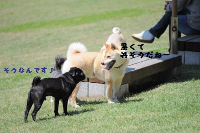 047_convert_20120512012533.jpg