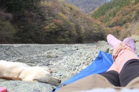 20110417_tanzawa_IMG_0232.jpg