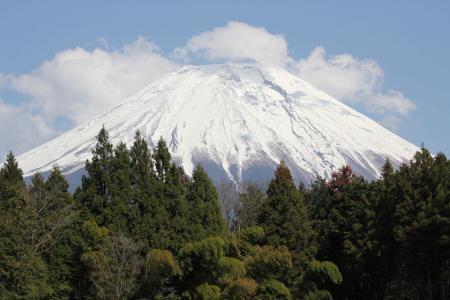 20110424_asagiri_IMG_0005.jpg